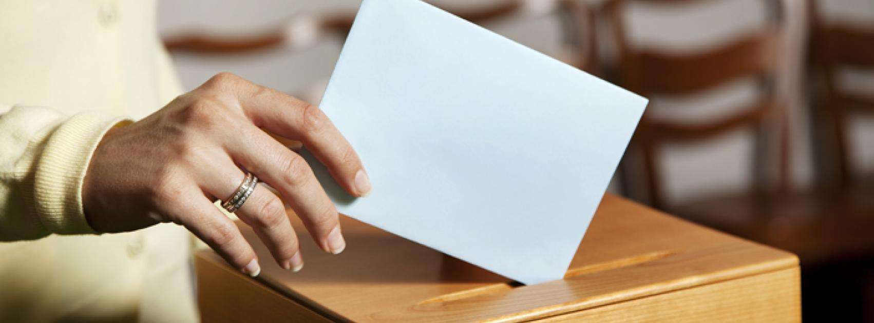 voting_picture_2.jpg