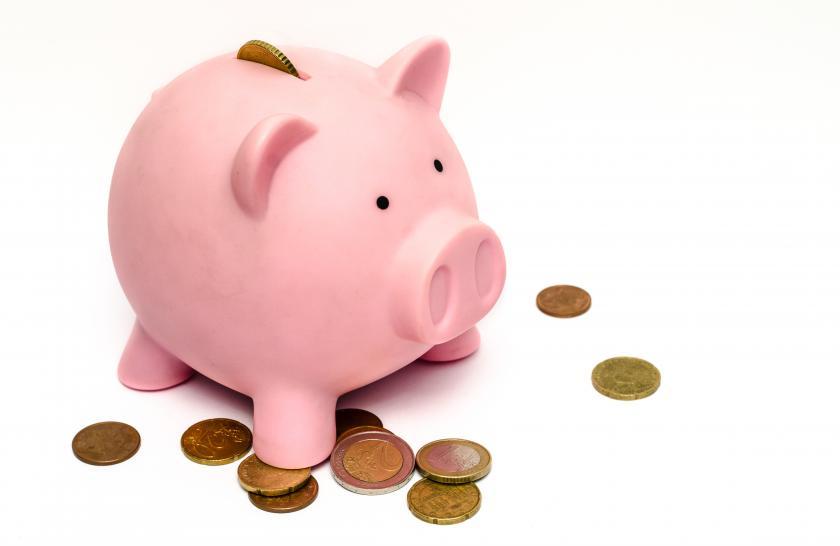 business-money-pink-coins_0.jpg
