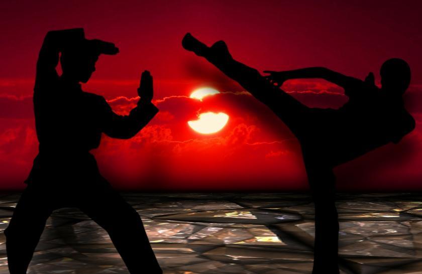 martial-arts-291049_1280.jpg